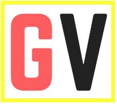 Gadget Voize
